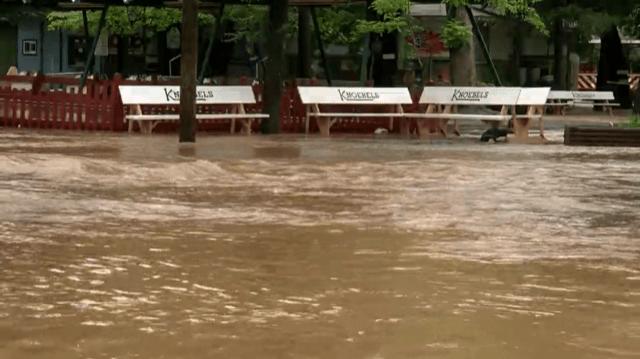Knoebels Flooding_1532555067844.PNG.jpg