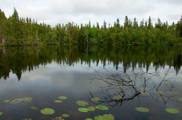 isole solovki solovetsky russia