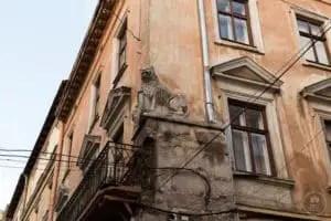 Un leone su un palazzo del centro