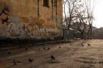 Cosa-vedere-a-Lviv-DSCF0857