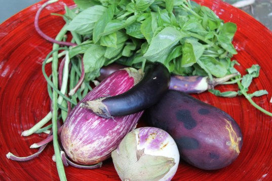 Eggplant, Basil and Long Beans from Hollygrove Farm