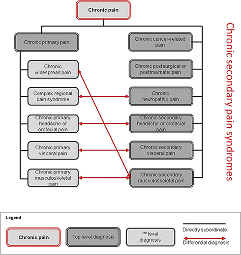 A New Classification of Chronic Pain for Better Patient Care and Research 2