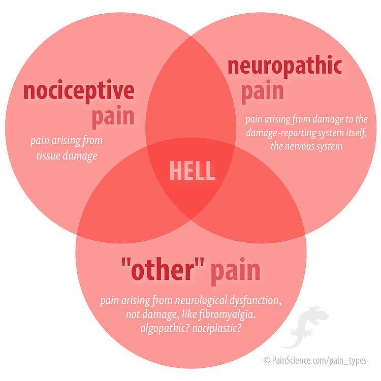"""Venn diagram showing the intersection of neuropathic pain, nociceptive pain, and """"other"""" pain. In the centre is the word """"hell."""""""