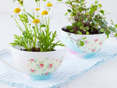 Decorative Tissue Paper Tea Cups