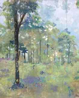 Forest in Munnar, Kerela