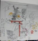 Nikko garden 2013
