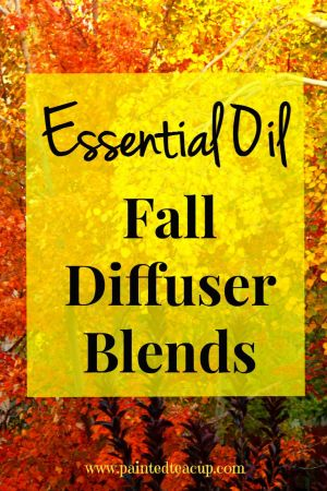 Essential Oil Fall Diffuser Blends. Perfect DIY blends to bring the smells of fall in to your home. www.paintedteacup.com