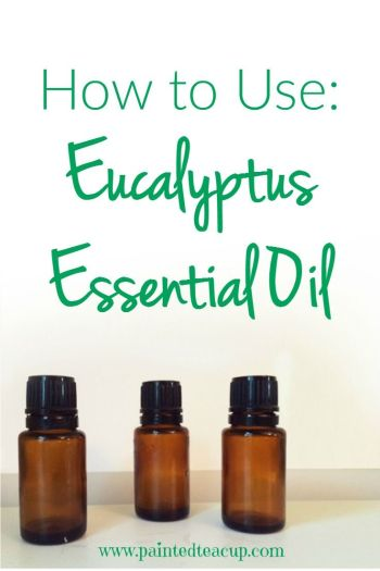 How to use eucalyptus essential oil for relaxation, clear breathing, removing odors, cooling skin & getting rid of bugs! And important safety precautions!