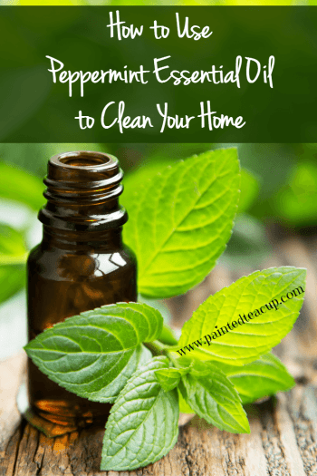 Skip the harsh chemicals and replace them with essential oils to naturally clean your home! Here are 4 ways to clean using peppermint essential oil!