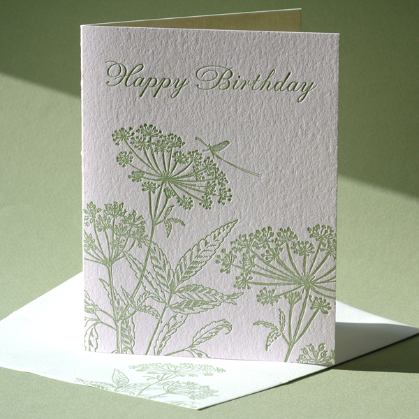 Queen Anne's Lace Birthday Card