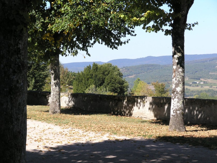 Trees-on-esplanade-with-gresigne-behind 2