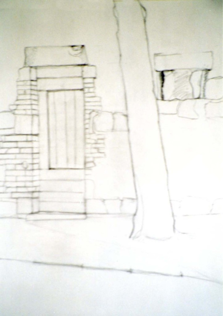 george hoope tree on esplanade drawing
