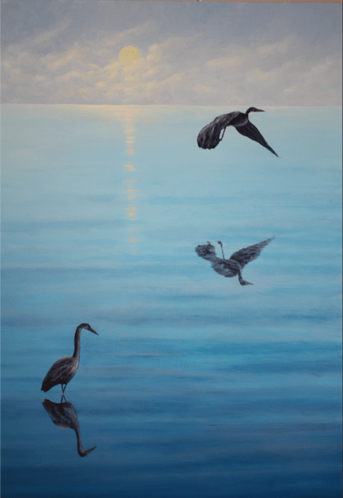 graham Mcintyre herons over sea