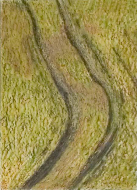 John Osborne tracks in field