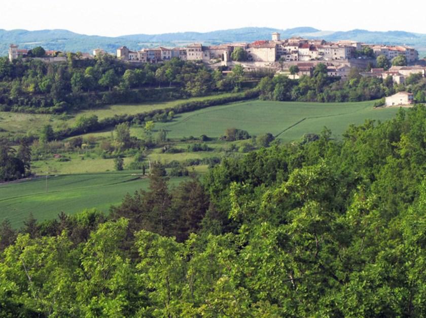 Castelnau de Montmiral south facing side