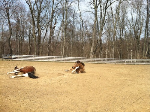 Blitz and boomer rolling