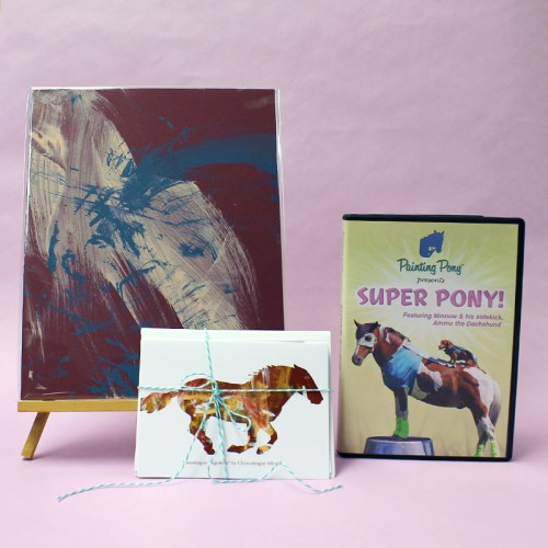 Super Pony DVD! Now available at Painting Pony