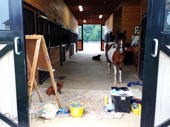 Minnow the Painting Pony