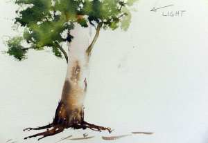 Painting small branches in gum trees