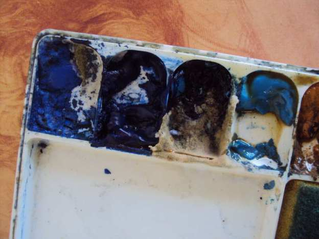 Mold or fungus on growing on watercolor paint in palette