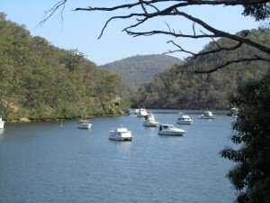 Berowra Waters Afternoon reference photo for watercolor painting