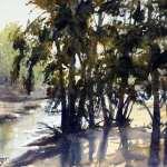 Watercolor plein air painting light through trees beside Grose River by Joe Cartwright