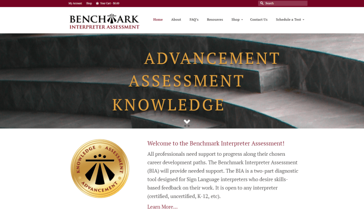benchmark_interpreter_assessment