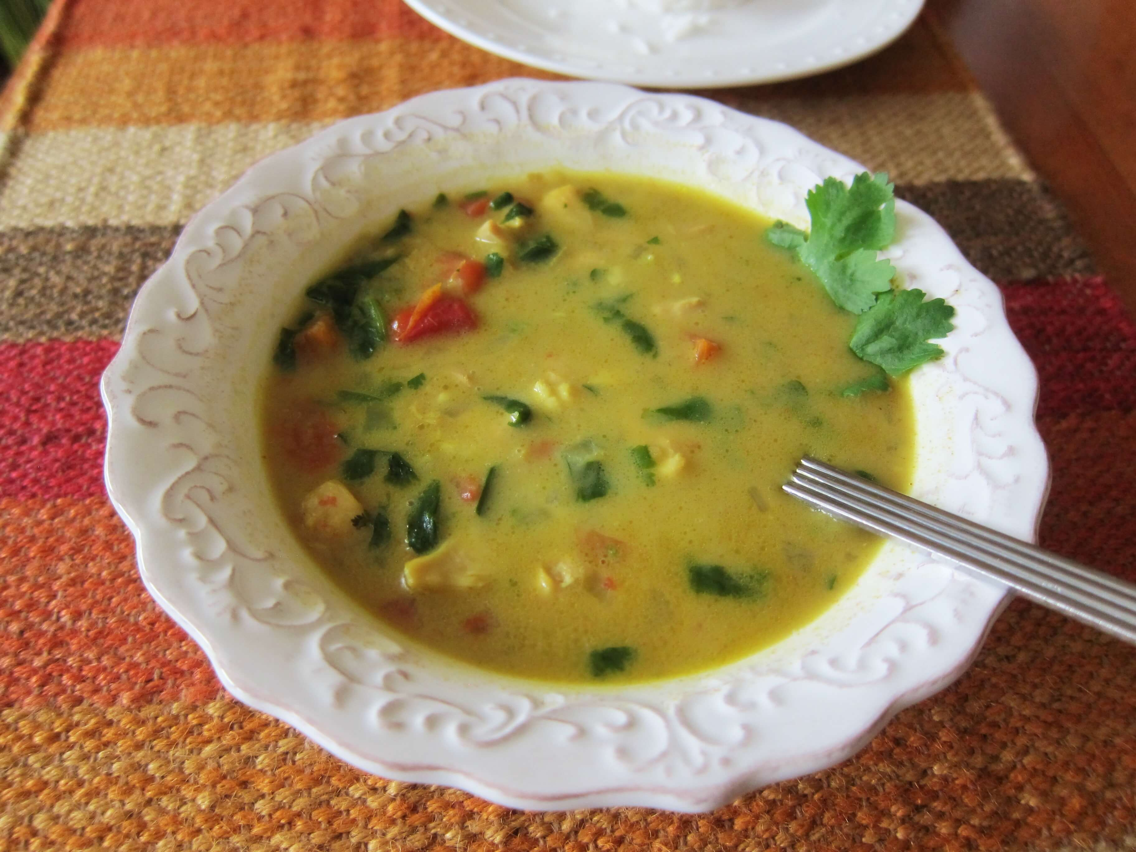 indian chicken curry soup with coconut milk - paint the kitchen red