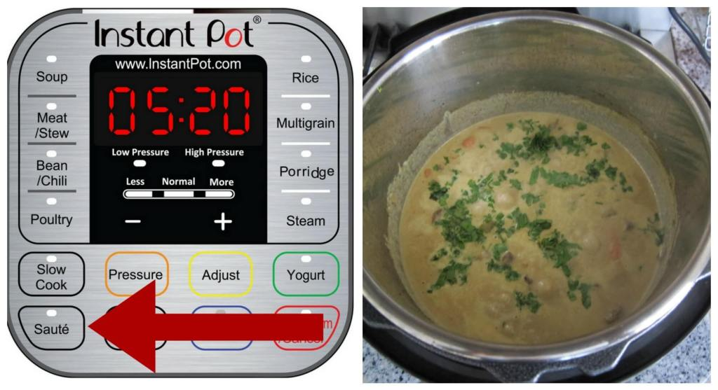 Instant Pot Beef Curry Instructions Part 9