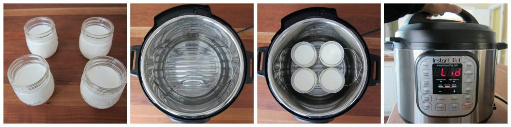 Instant Pot Yogurt Instructions 1 - Paint the Kitchen Red