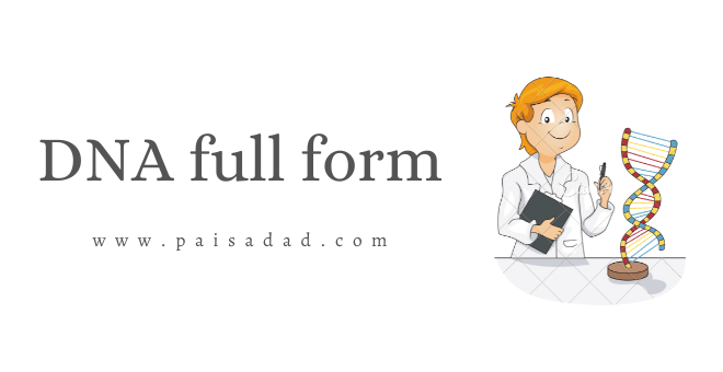 DNA full form in Hindi
