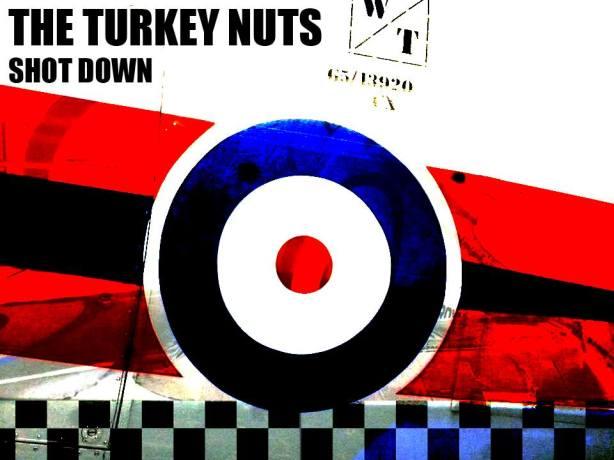 turkey-nuts