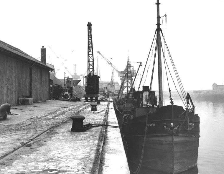 paisley harbour