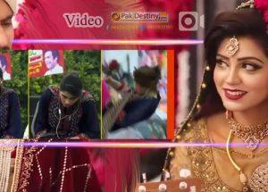 irza khan got married afreen afreen