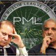 pmln forward bloc exposed