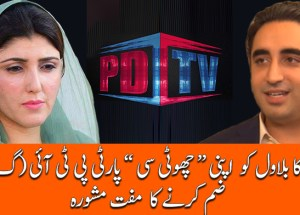 ayesha gulalai asks bilawal to merge ppp in pti