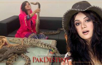Actress Rabi seeking cheap fame through reptiles abuse