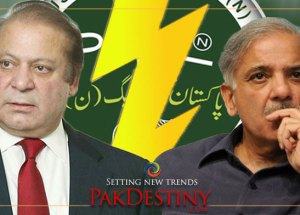 pmln divided over nawaz sharif health issue treatment