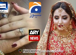 Pakistani media appears 'idiotic' for giving round the clock coverage to Hareem Shah like characters