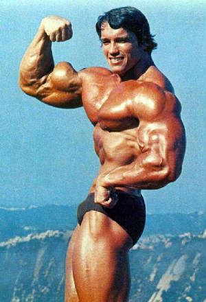 krótki biceps arnold