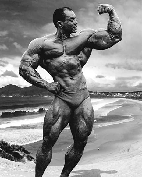 długi biceps sergio oliva