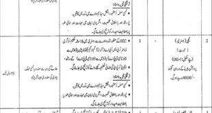 Government Teaching Jobs In Sialkot 2019 Disable Quota School Education Department