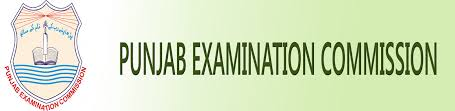 PEC Vehari 5th Class Result 2019 Check Online By Roll No, Name