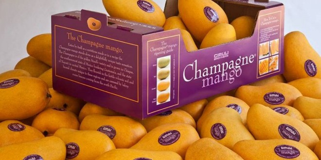 Mango exporters violating packaging policy » Pakissan com