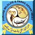 Parks & Horticulture Authority PHA Multan
