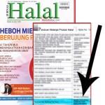 Ayam Goreng Halal