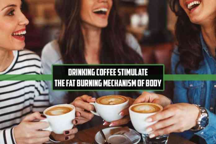 drinking coffee, fat-burning