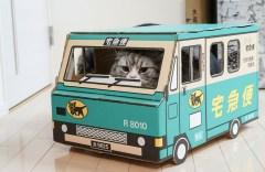 荷物をお届けにあがりましたー(猫)
