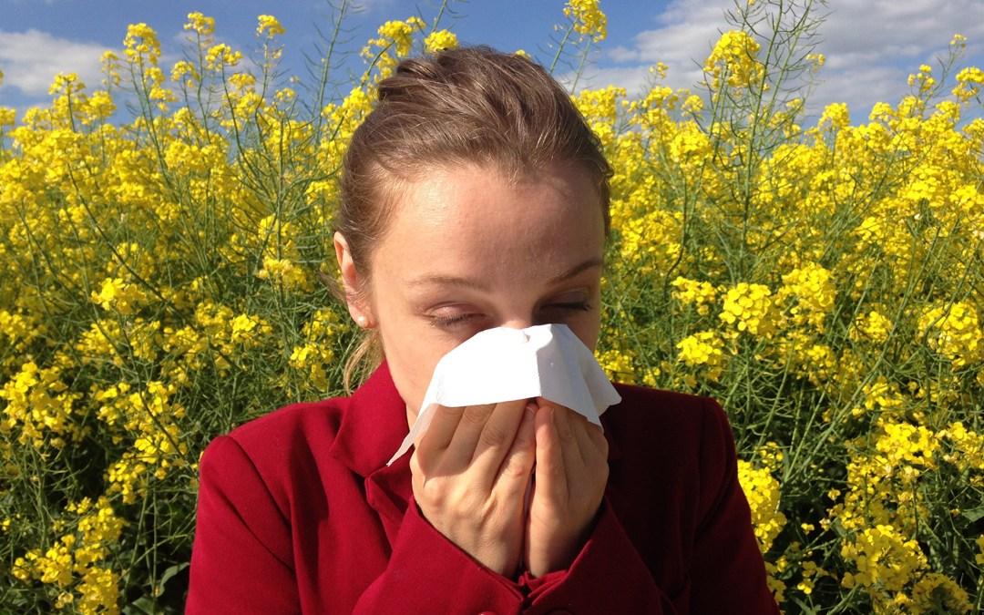 Las alergias: síntomas, tipos y tratamientos
