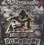 Downpipe single cover